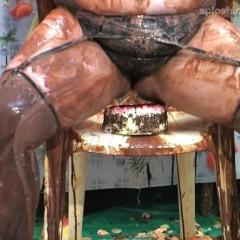 BillShipton [1955-2013]: Pied, panty-filled, wedgied, cakesitting choc DD Dolly