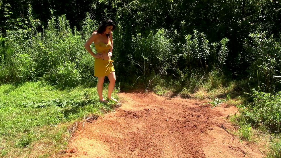 Kym Quicksand Kyms-solo-in-hollywood-quick_12